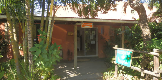 Our reception - Main Road, Port St Johns